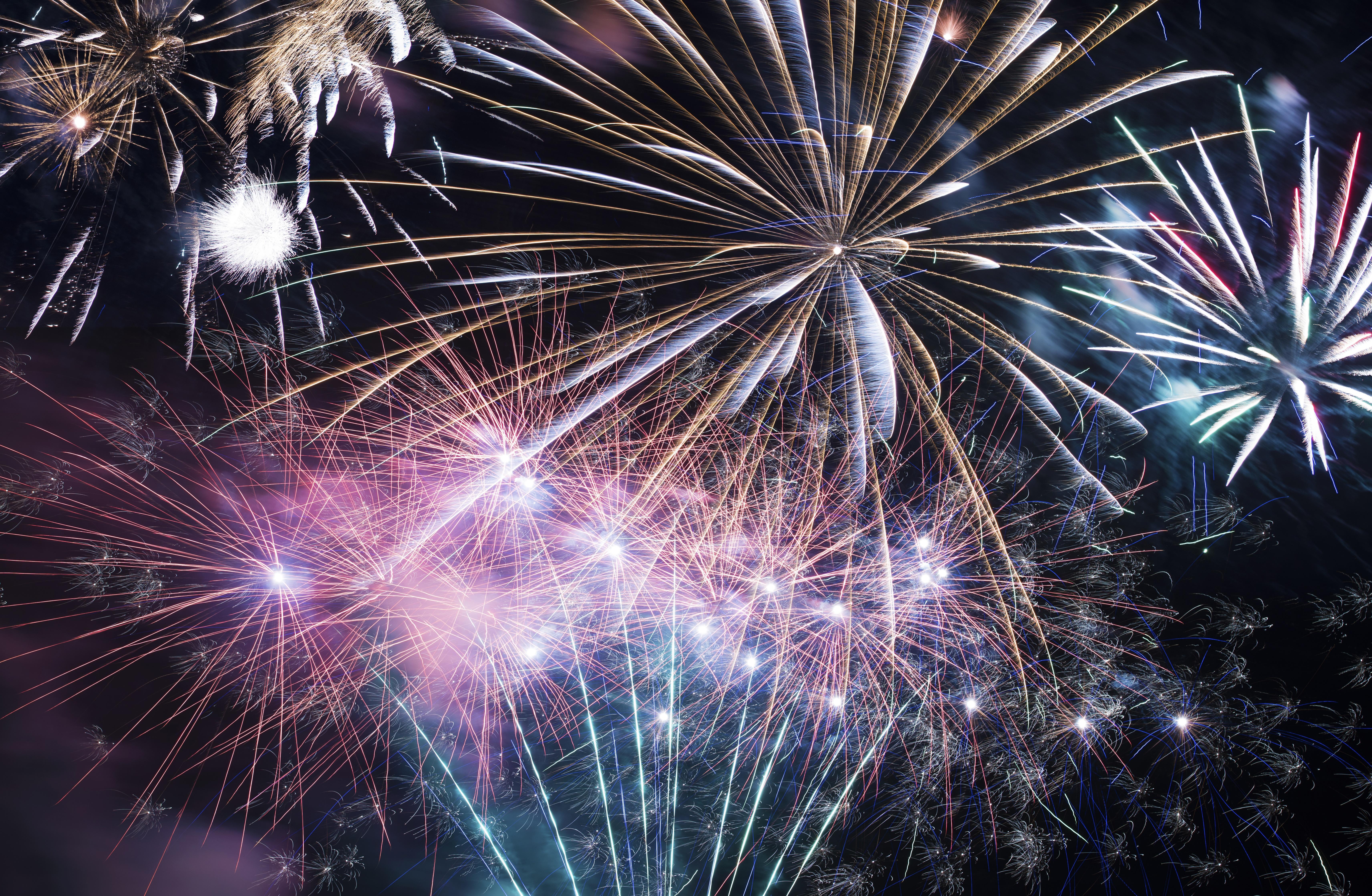 Fireworks Celebration. Colorful Fireworks on Black Sky.
